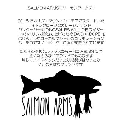 【SALMON ARMS/サーモンアームズ】Raber x Arms Mitt(SAFETY)